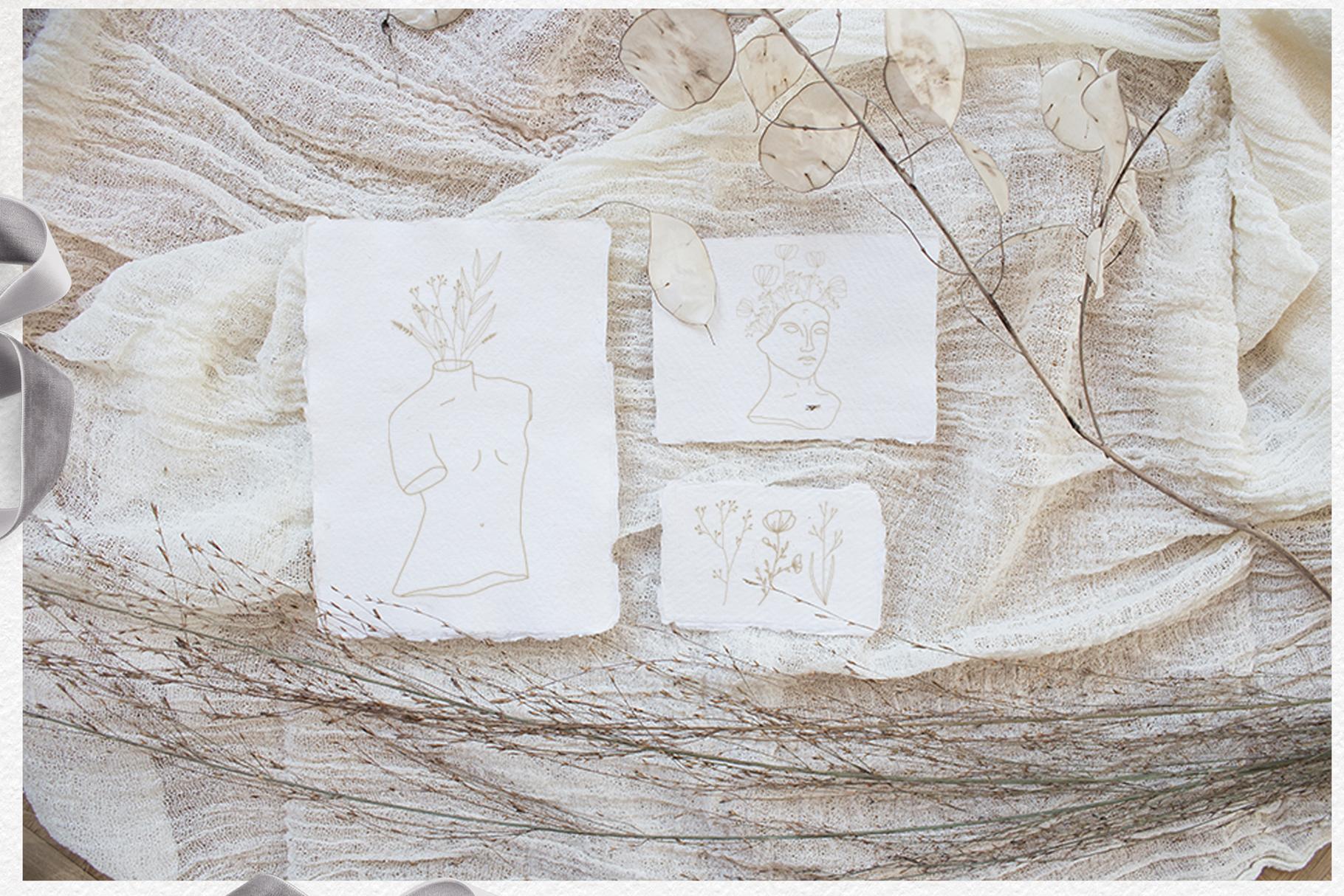 Line art botanical illustrations example image 9
