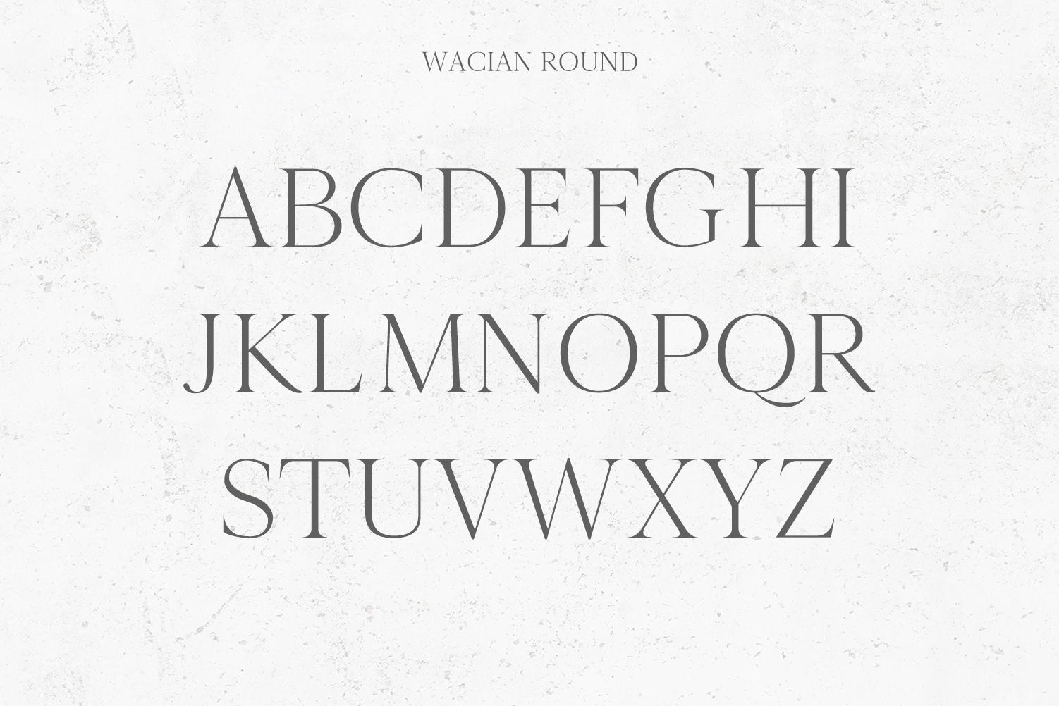 Wacian Serif Font Family Pack example image 3