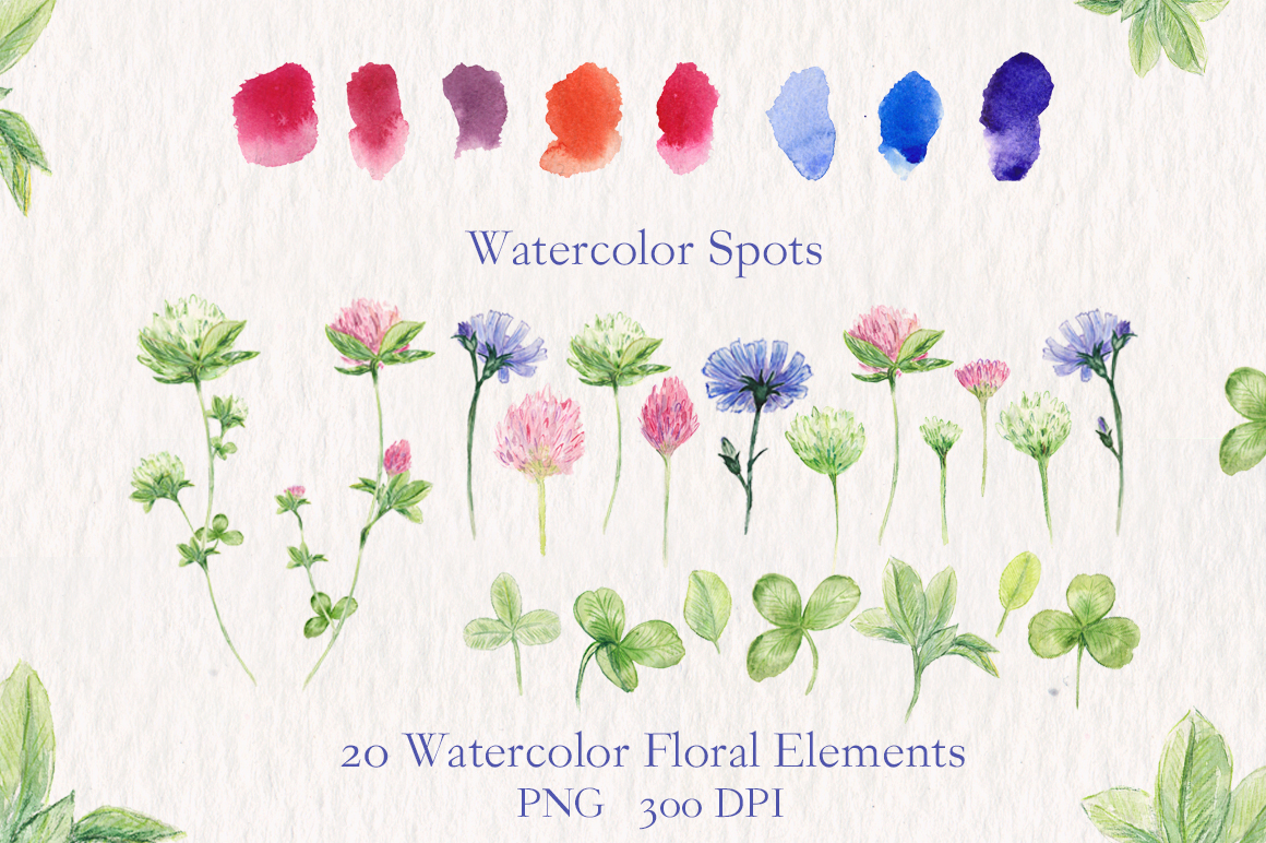 Watercolor collection of summer flowers example image 3