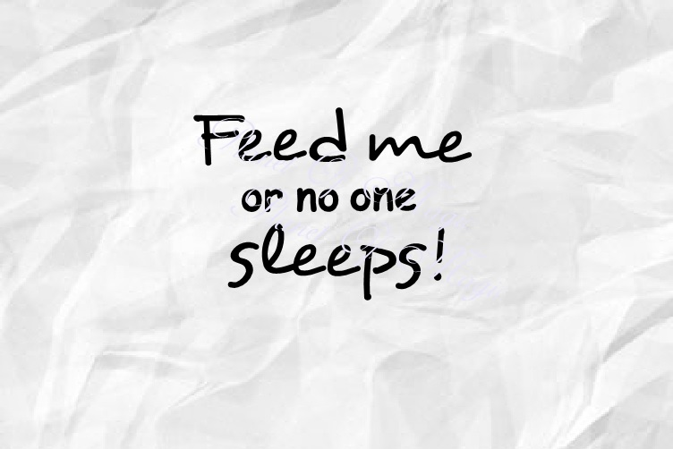 Feed Me Or No One Sleeps Svg, Baby Svg, Newborn Svg example image 2