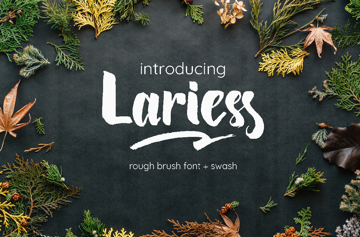Lariess - Brush Font With Swashes example image 1
