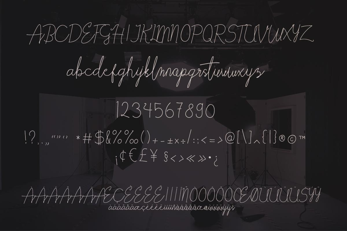 Elabama - Signature Font example image 5