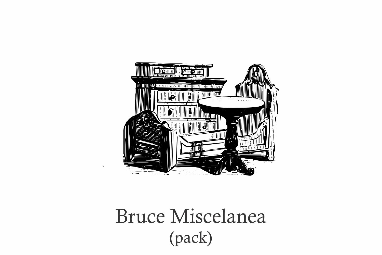 Bruce Miscelania (pack) example image 1