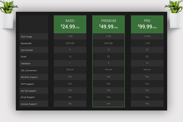 Web Pricing Table example image 3