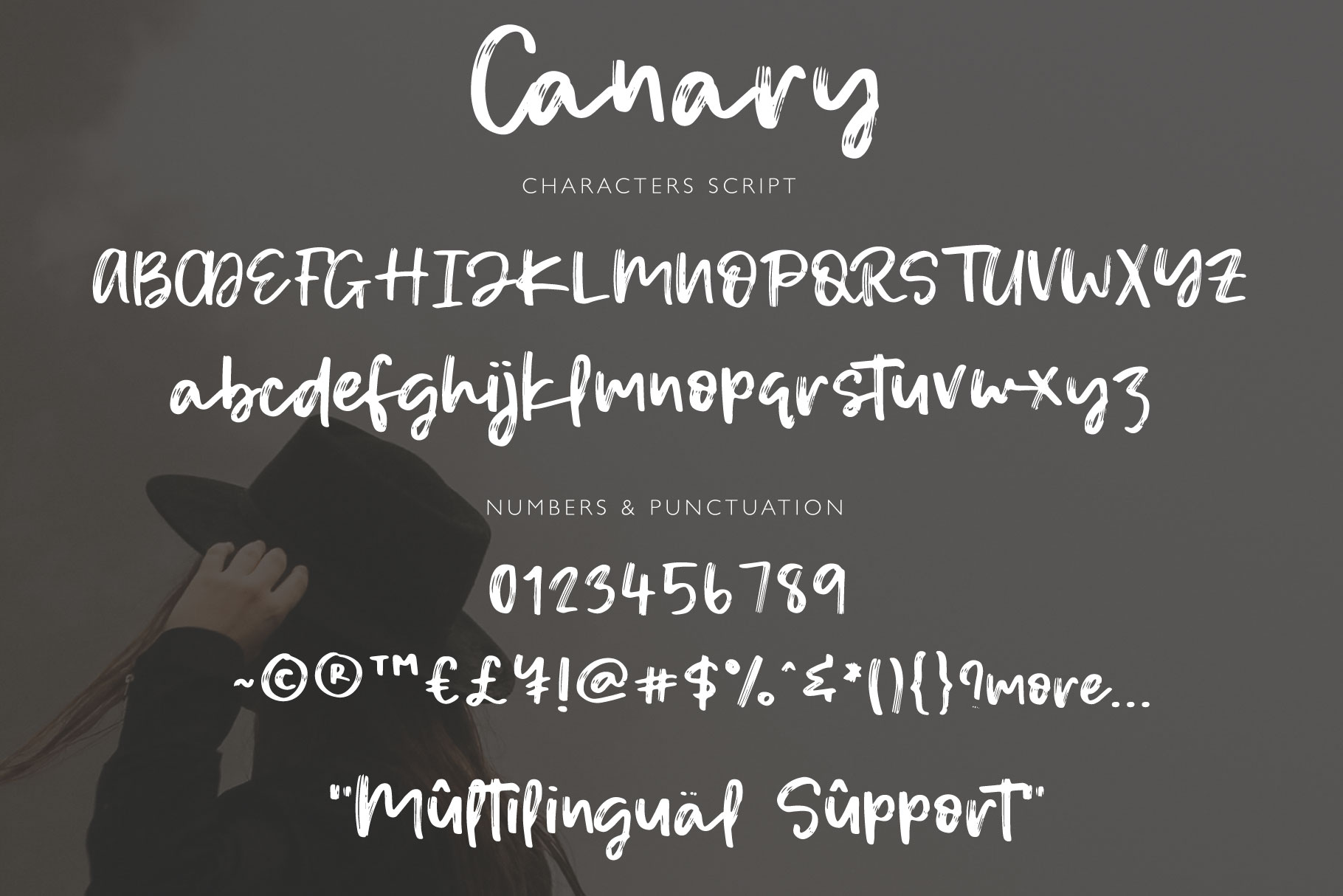Canary example image 7