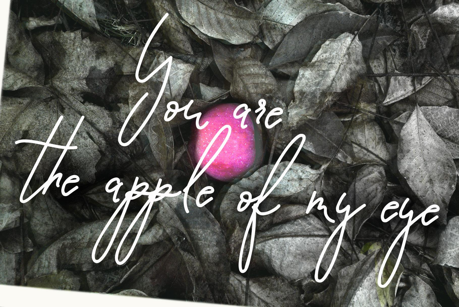 Script Font Pomme Noire example image 4