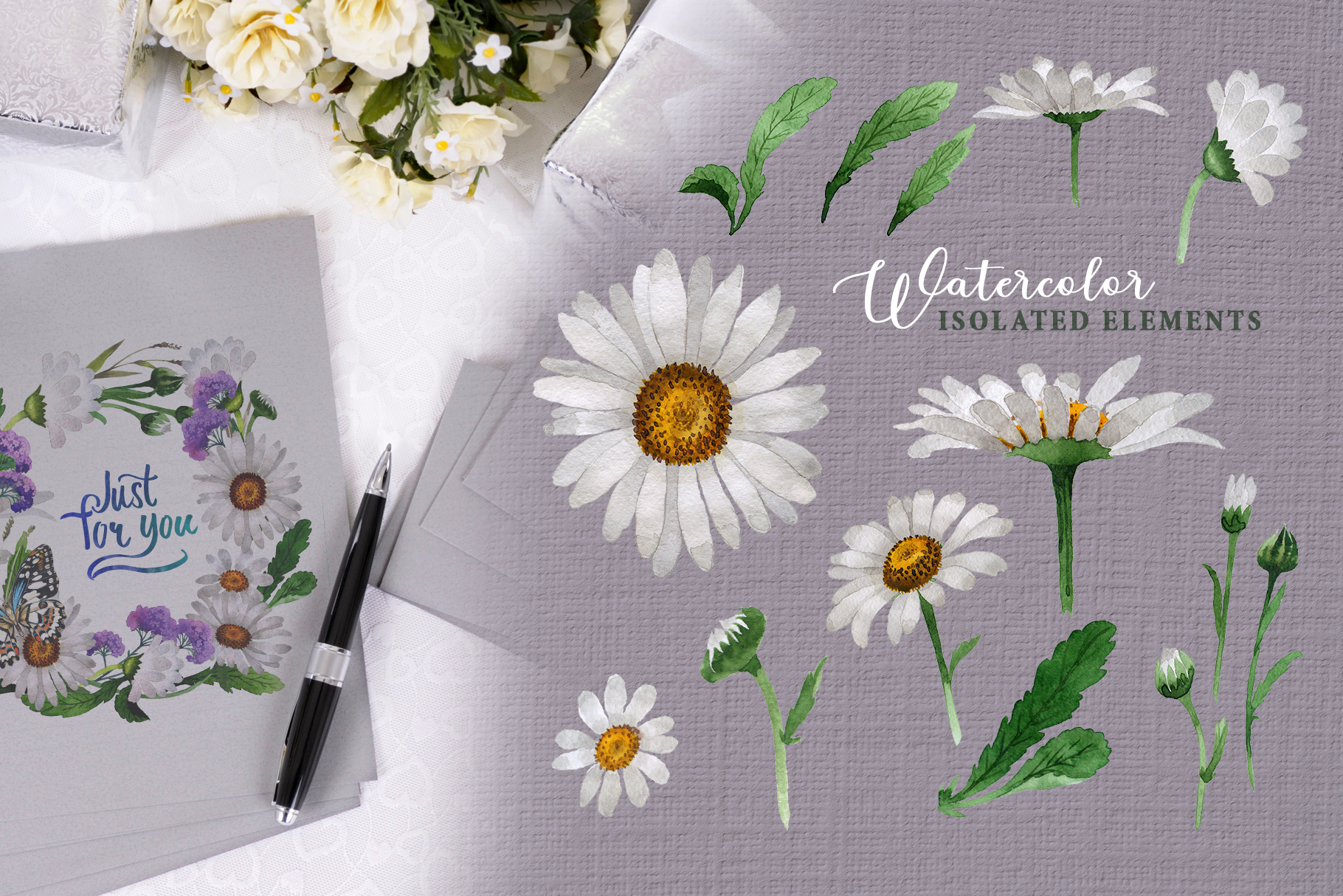 Chamomile white Watercolor png example image 8