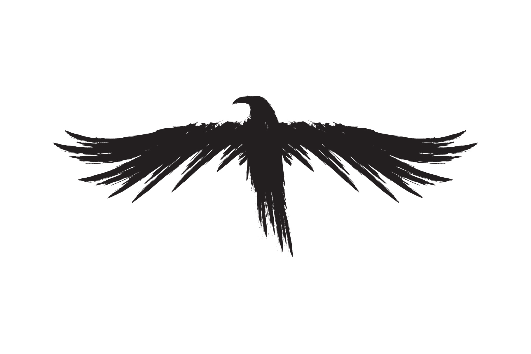 Black raven crow body and wings. example image 8