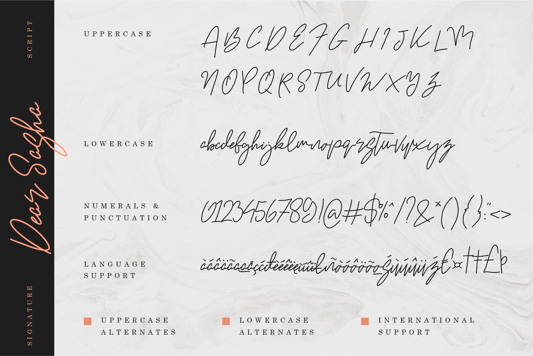 Dear Sasha Font Pack example image 6