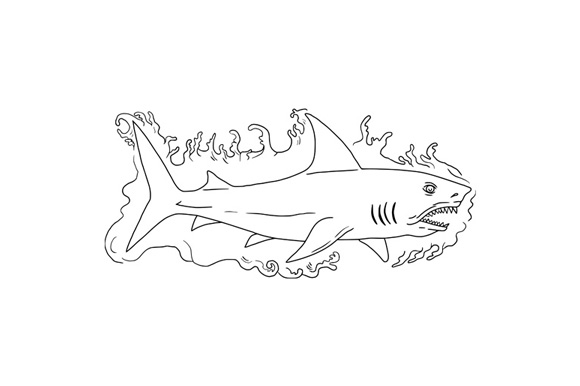 Shark Water Side Drawing example image 1