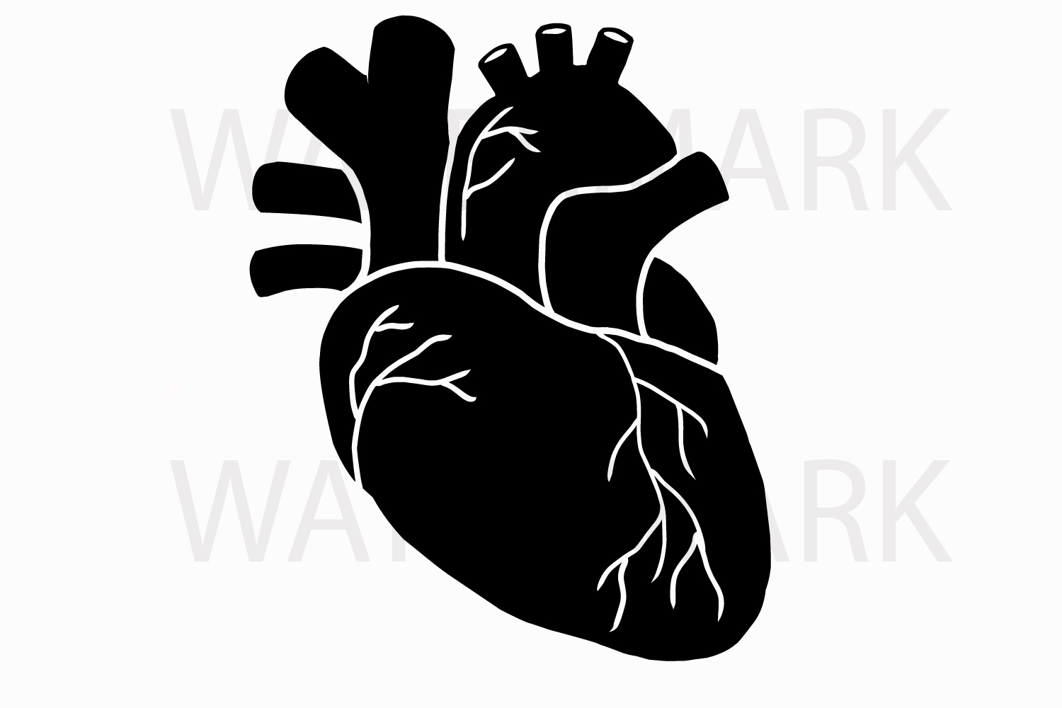 Human Real Heart in Black - SVG/JPG/PNG Hand Drawing example image 1
