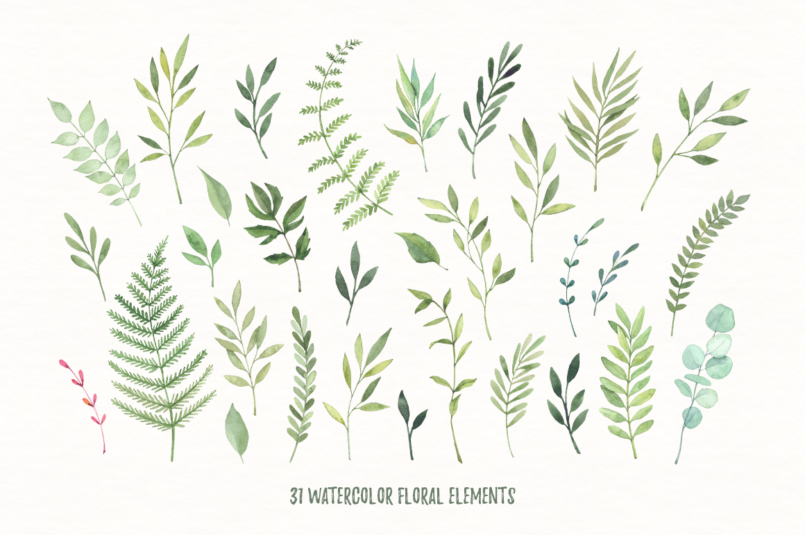 Wild leaves clip art. Watercolor set example image 2