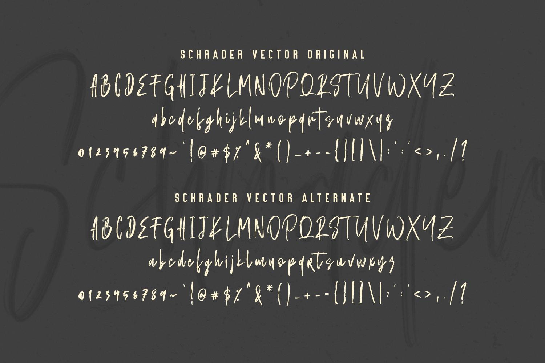 Schrader SVG Brush Font example image 11