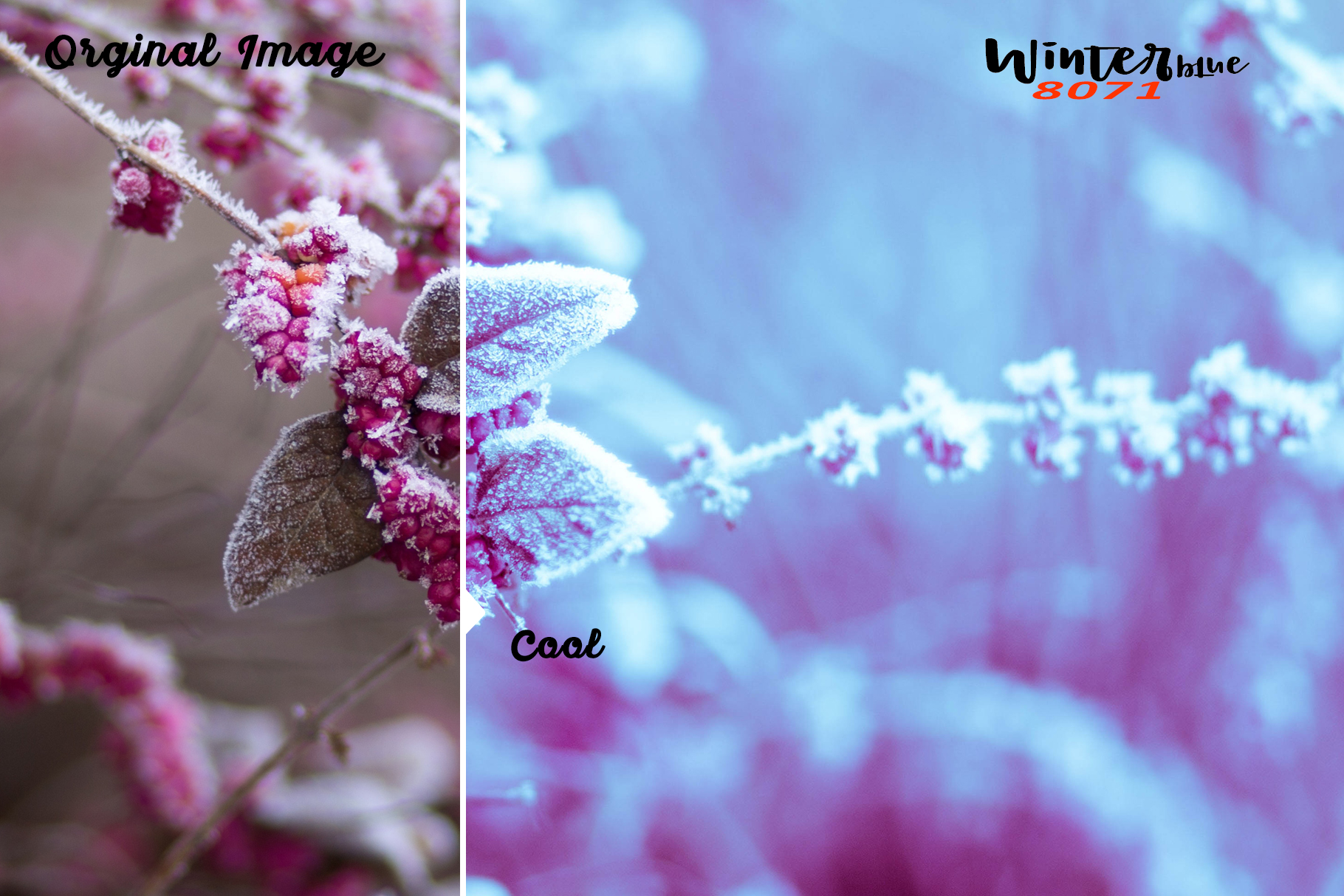 Winterblue Lightroom 80 and ACR 80 Presets example image 7