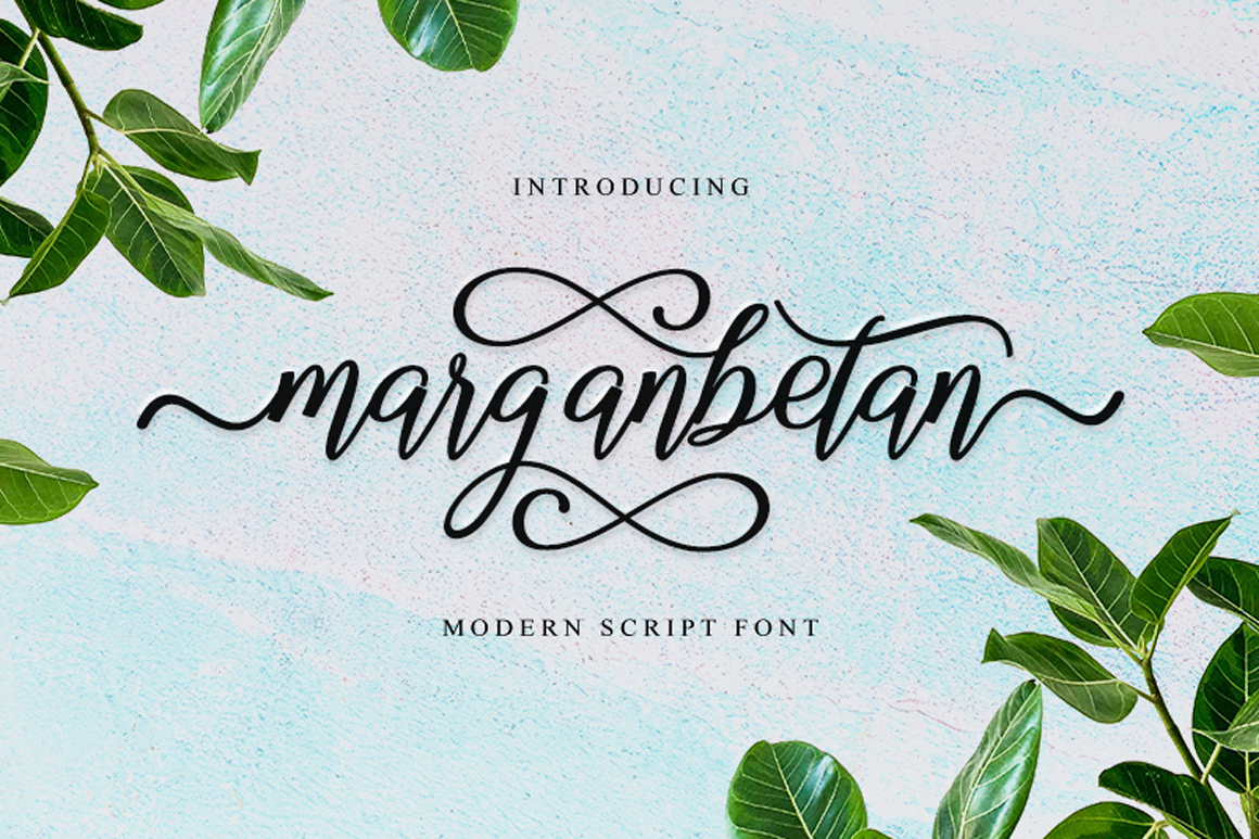 The Best Font Bundle Collection example image 4