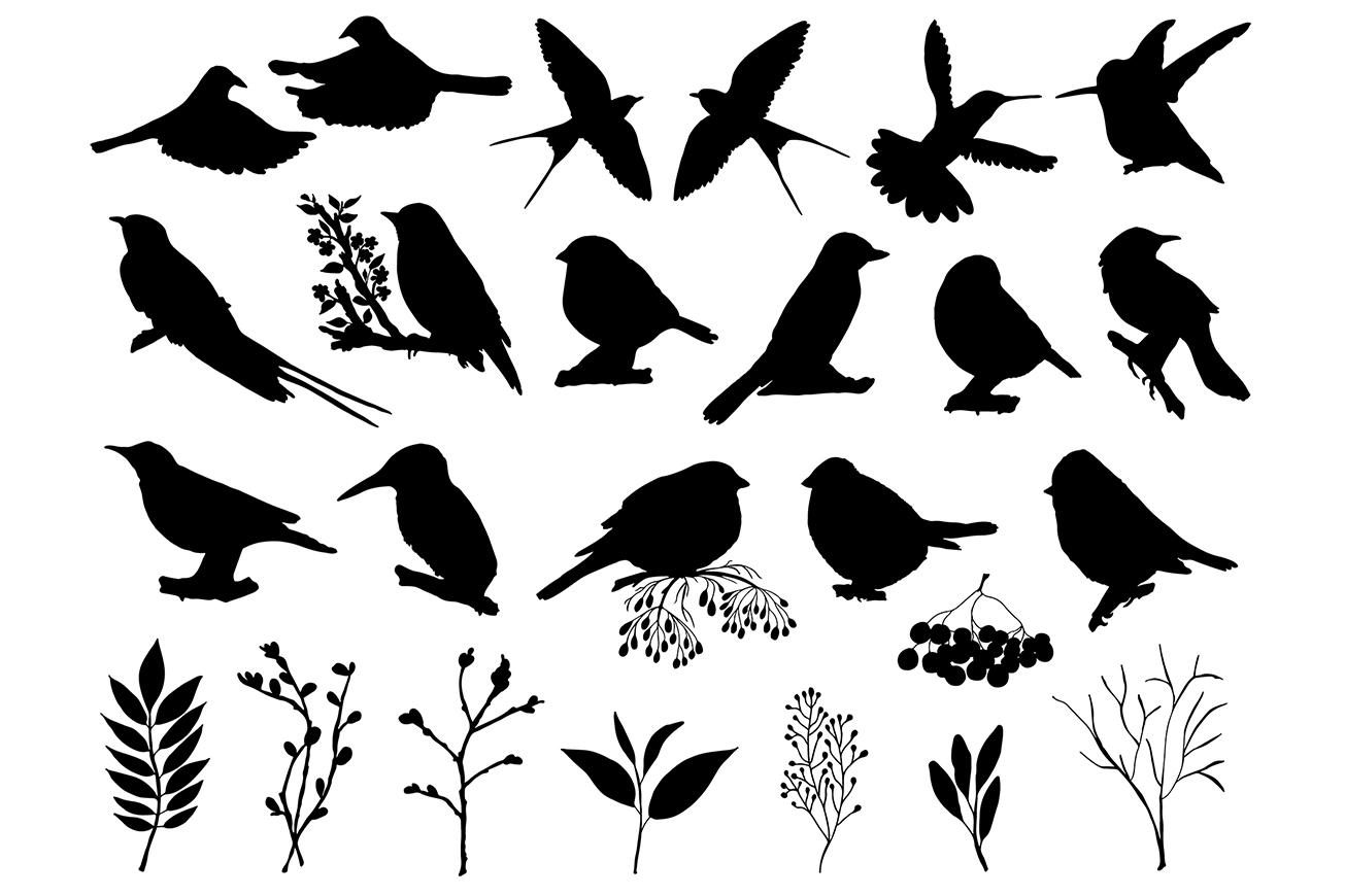 Sketch birds. Vector set. example image 4