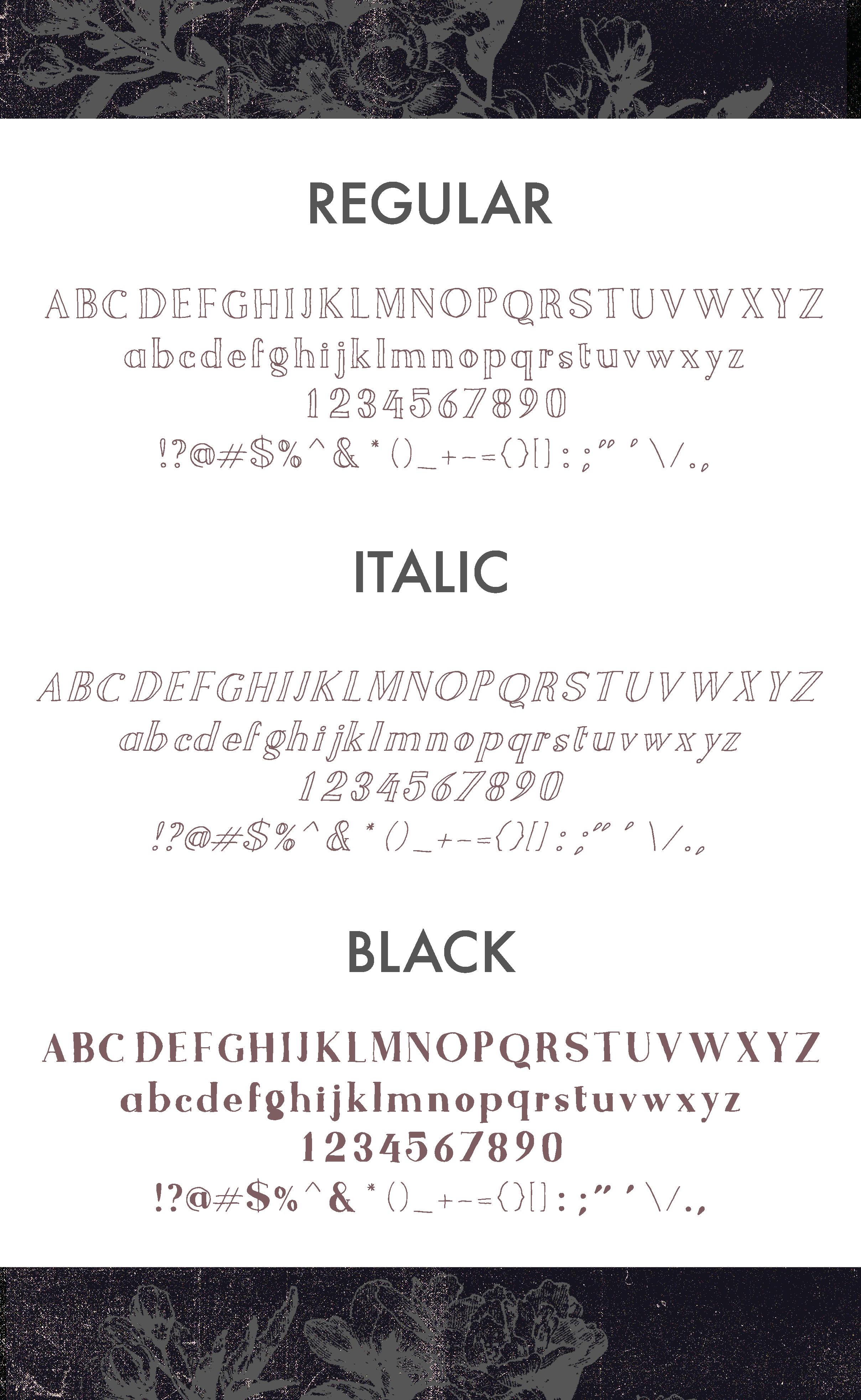 Bogota Handwritten Font example image 4