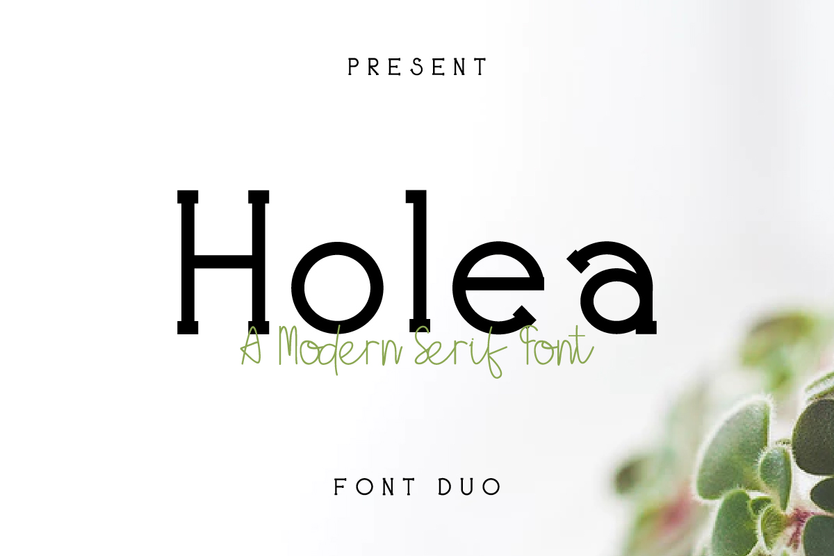 Holea example image 1