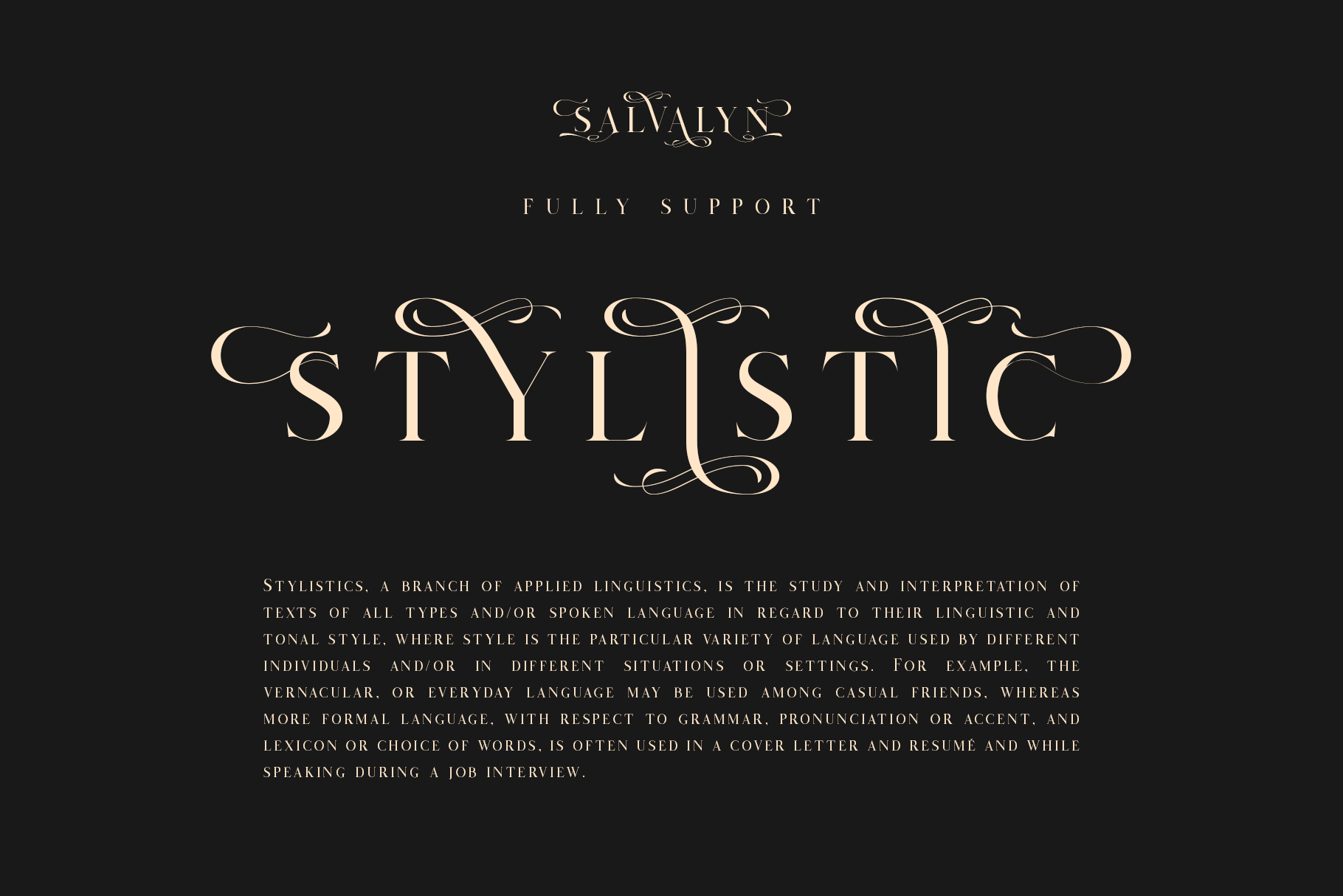 Salvalyn - Stylistic Serif Font example image 3