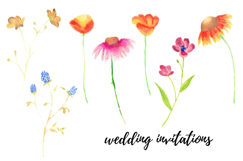 Watercolor Illustration With Field Flowers, Vintage Wedding example image 3