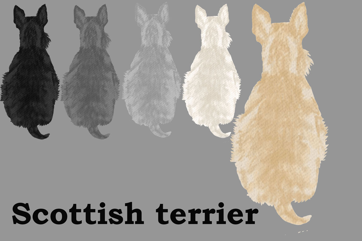 Dog Clipart, Dog breeds, Pet clipart,Puppies clipart Dog Png example image 8