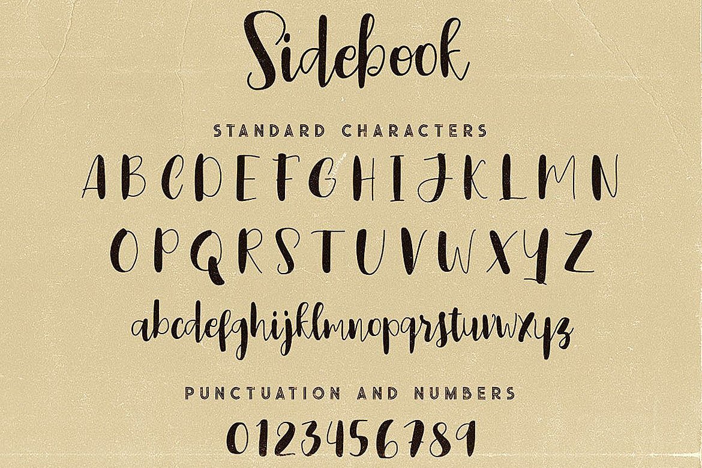 Sidebook Script Font example image 5