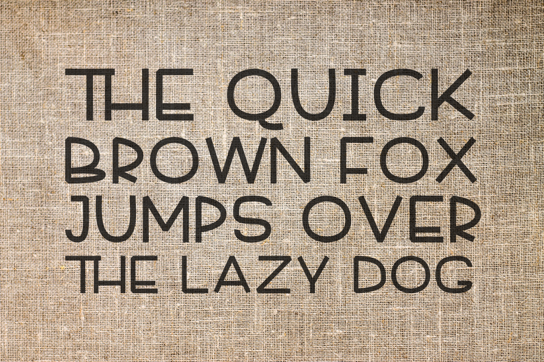 Font Bundle 5 Exclusive Fonts!  example image 4