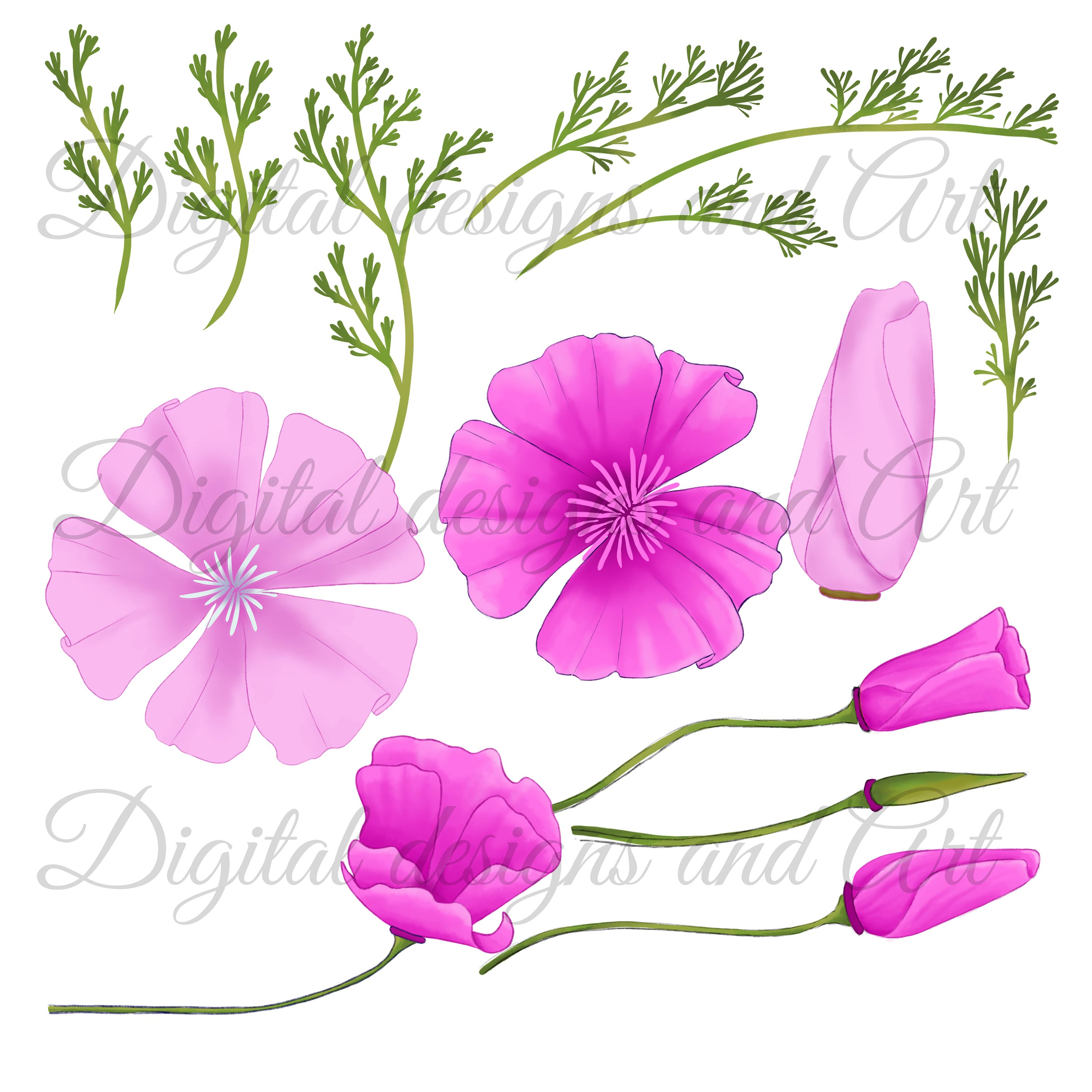 Poppy clipart example image 4