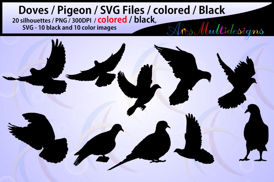 pigeon silhouette / Doves / pigeon / printable dove / doves SVG file / PNG / colored doves / colored pigeon silhouette / pigeon svg file example image 3