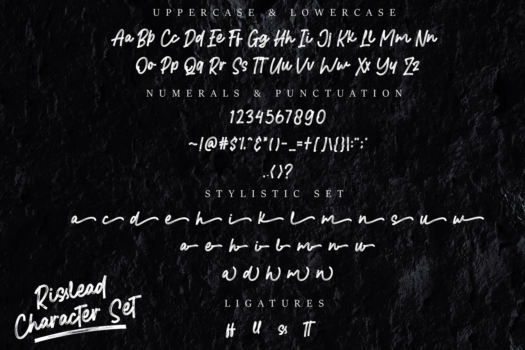 Risslead Brush Fonts example image 8