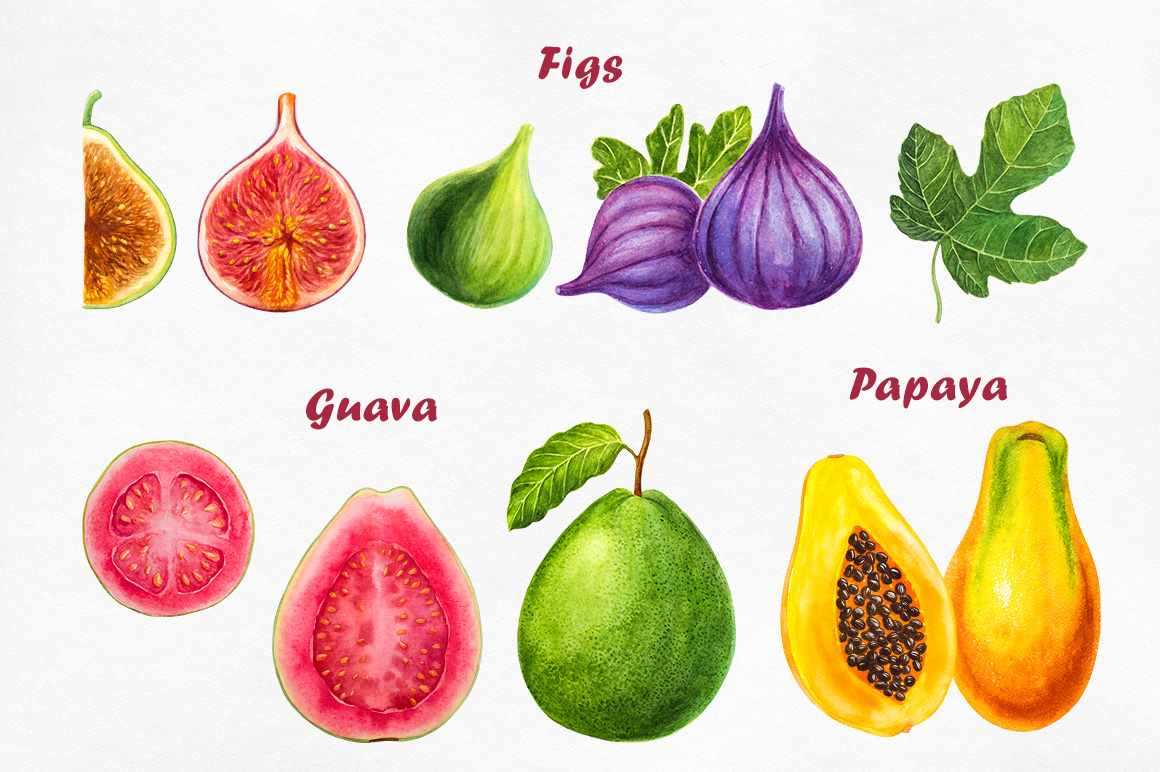 Watercolor Fruits collection example image 3