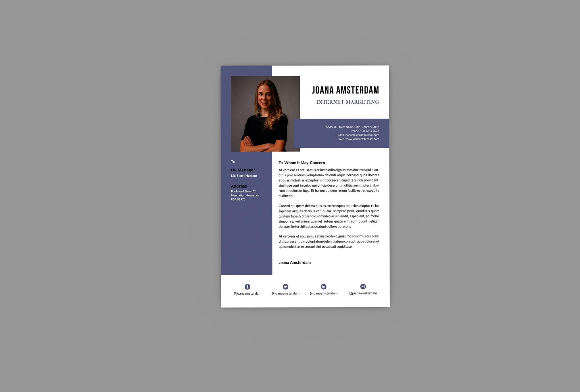 Alternatif Resume Designer example image 3