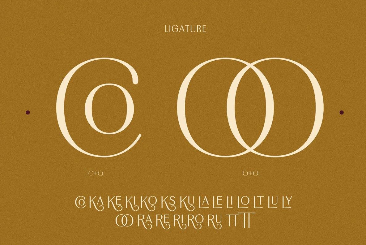 Borest - Elegant Roman Sans Serif example image 21