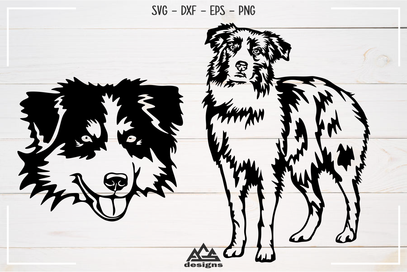 Dog Australian Shepherd Svg Design example image 3