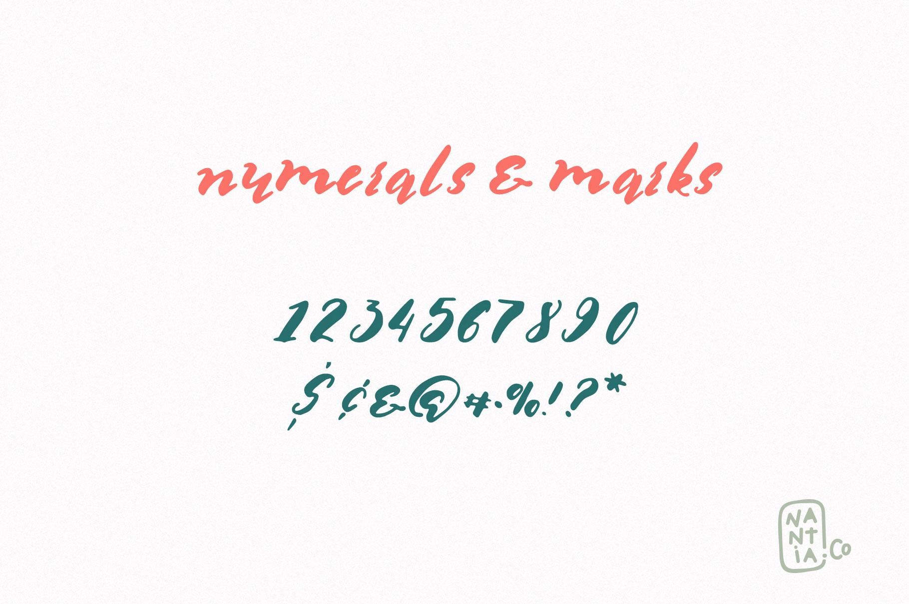 Multilingual Brush Font- Naquia Font example image 11