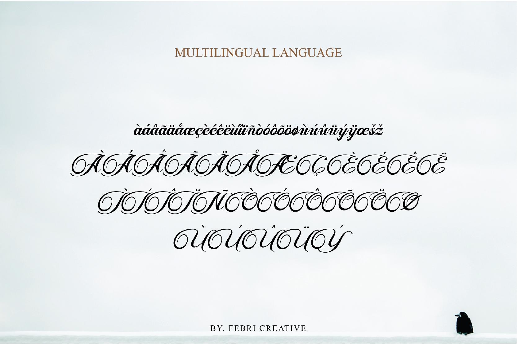Fisha Script example image 9