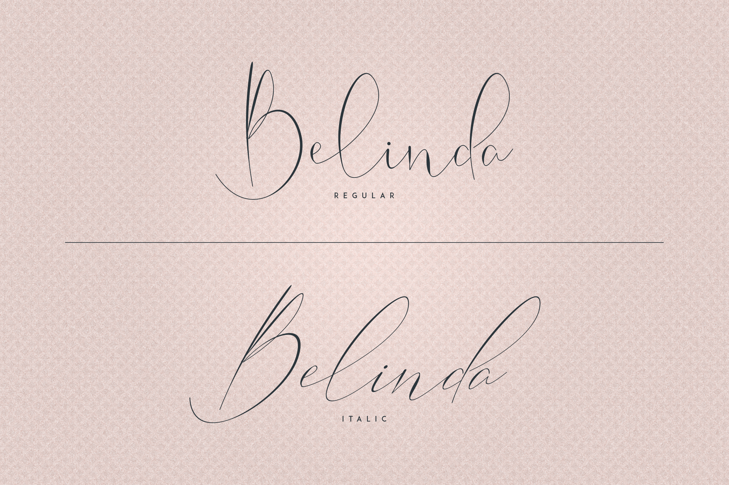 Belinda Script - Regular and Italic example image 2