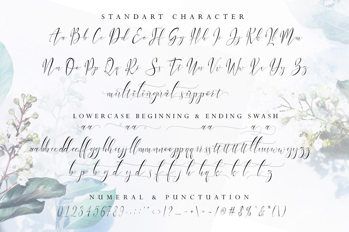 Vabrietta Script example image 12