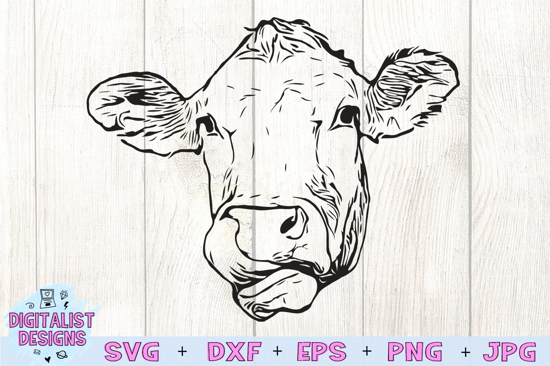 Cow Face SVG, Heifer SVG, Farm SVG example image 2