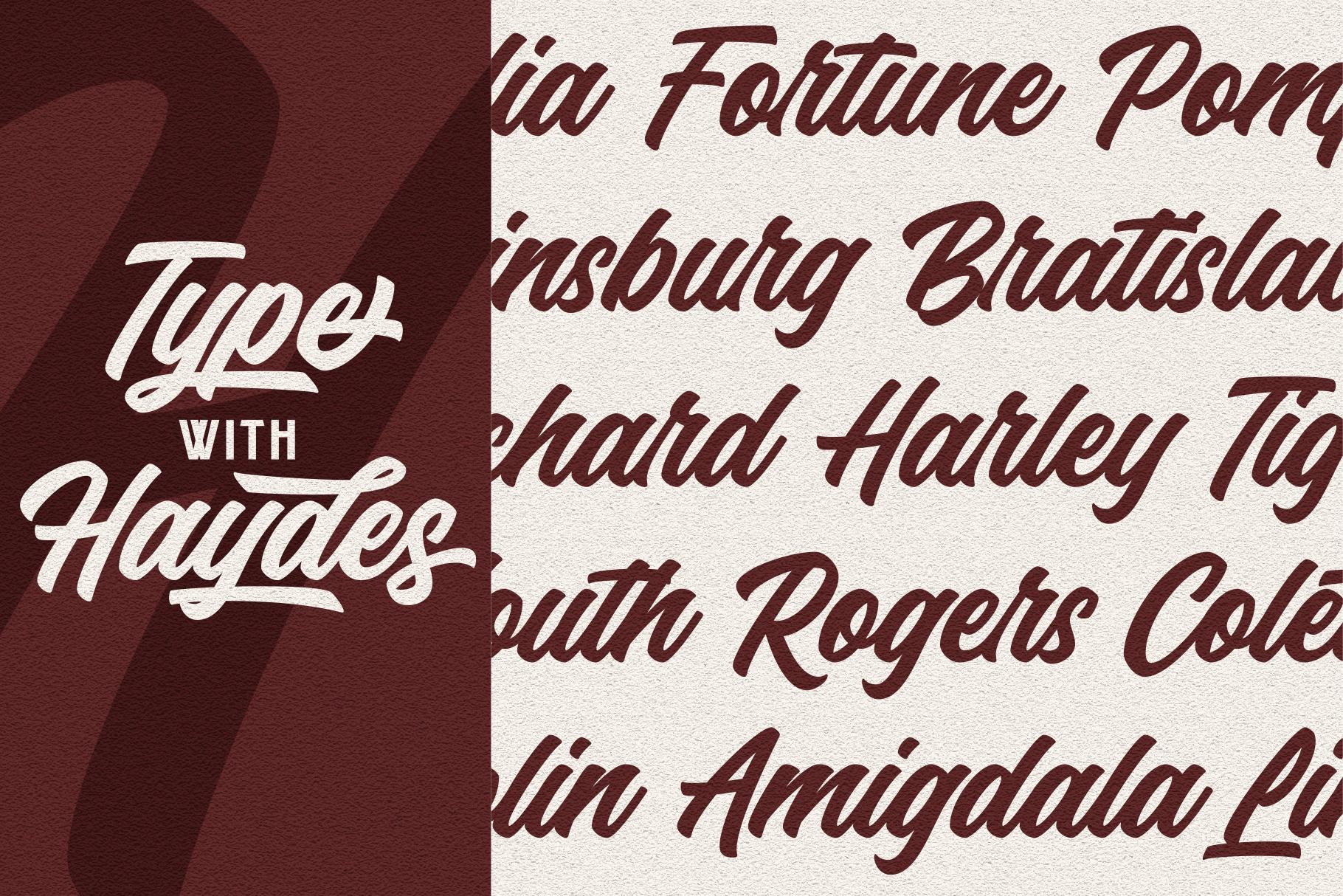Haydes Script Font example image 4