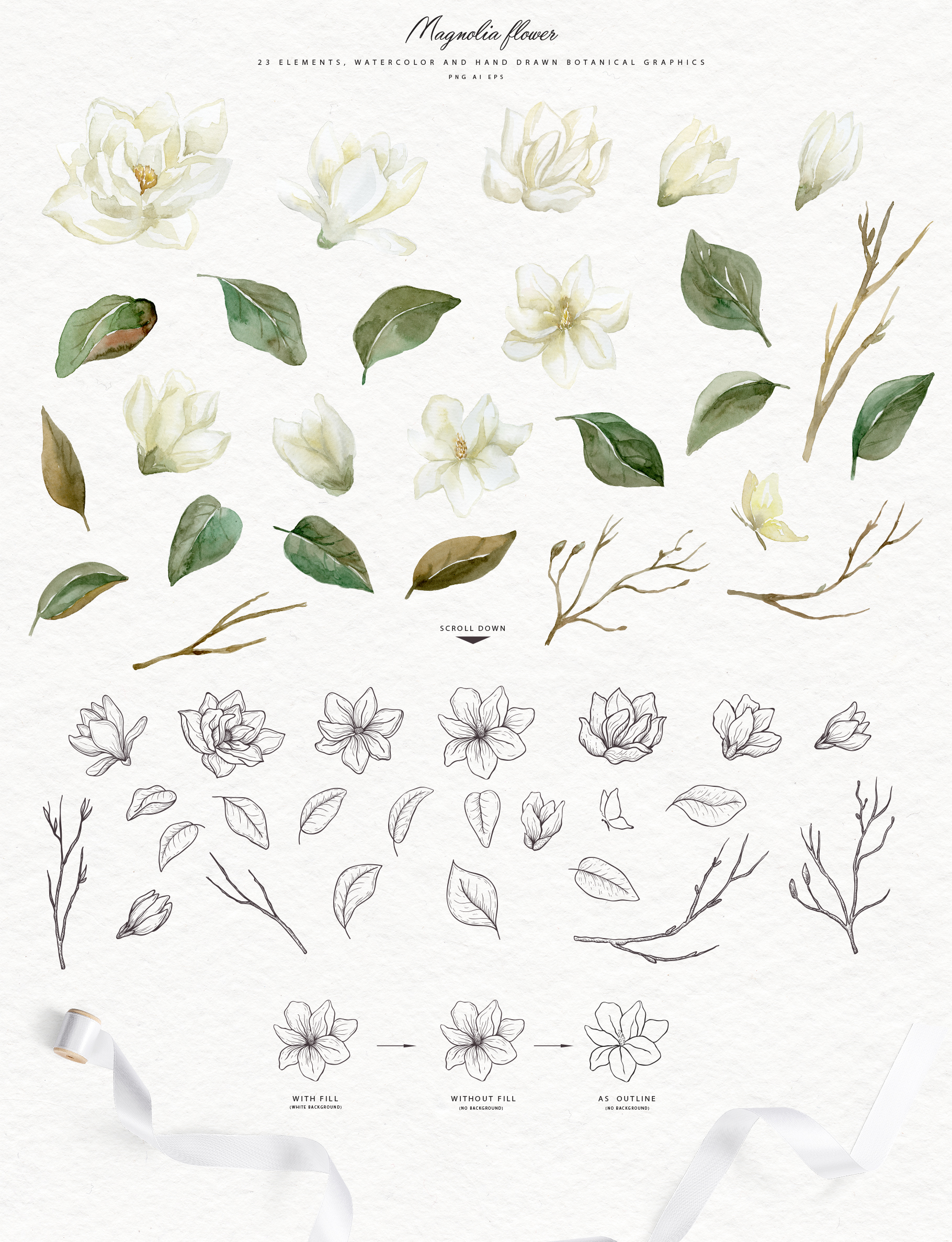 White Magnolia and Cotton. Trendy Greenery example image 4