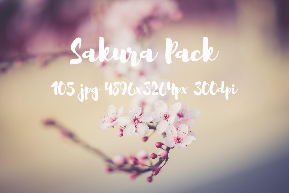 sakura photo pack example image 16