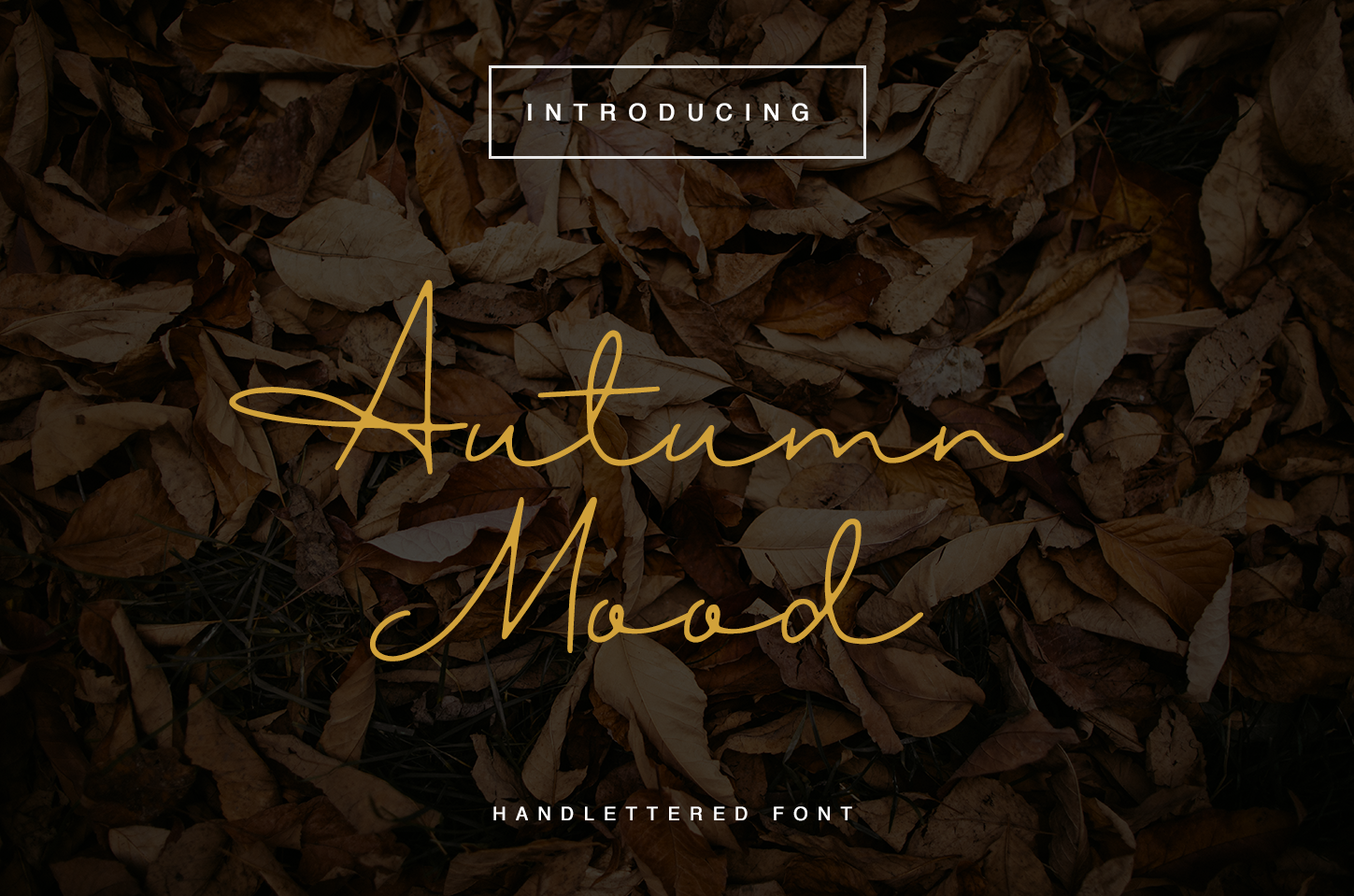 Autumn Mood example image 1