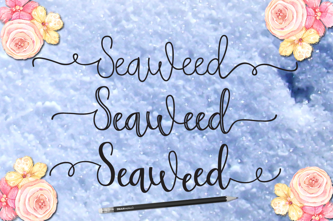 Seaweed example image 2