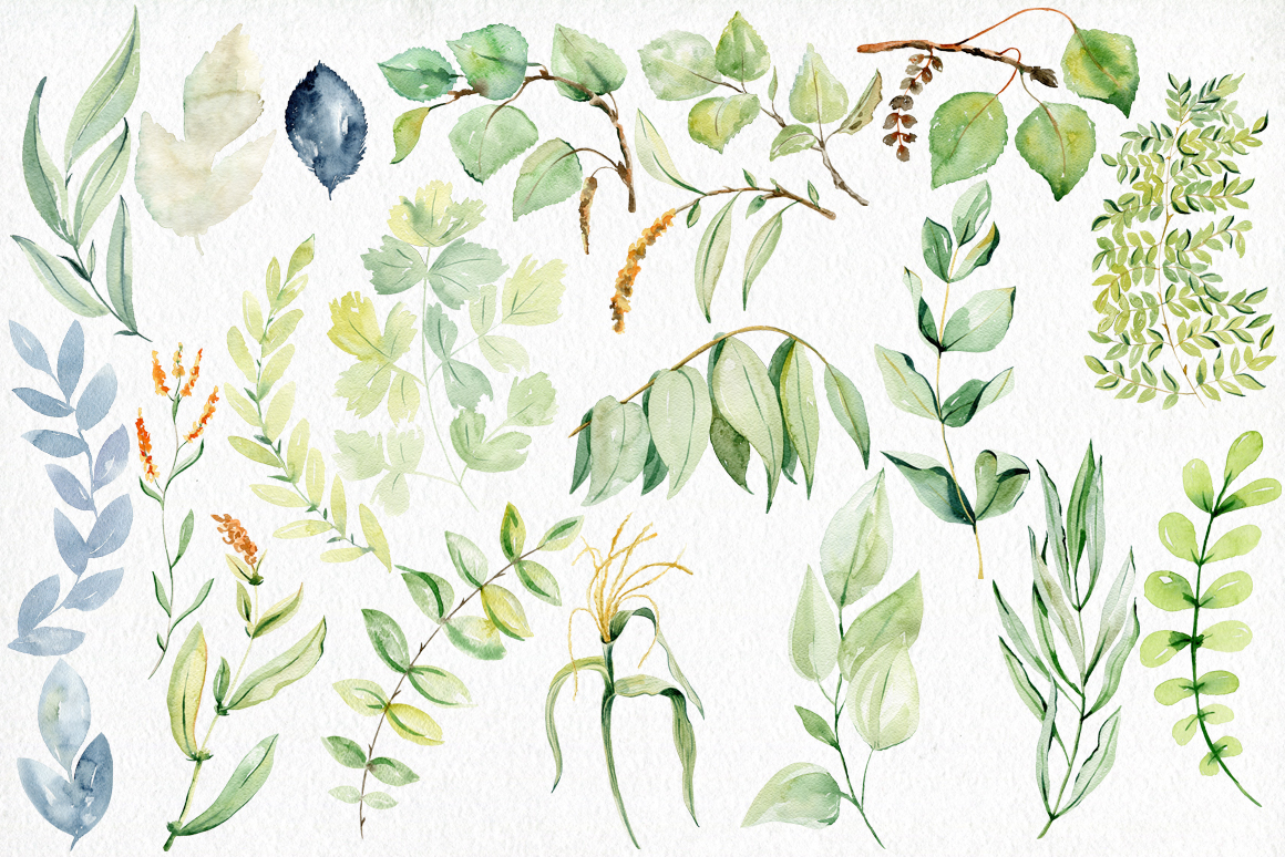 Watercolor leaves clipart. example image 3