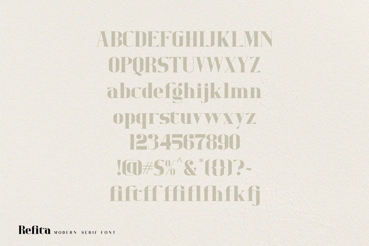 Refita. Modern Serif Font example image 11