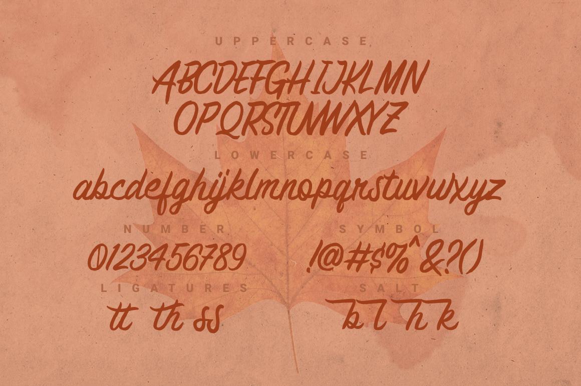 Brashed Typeface example image 2
