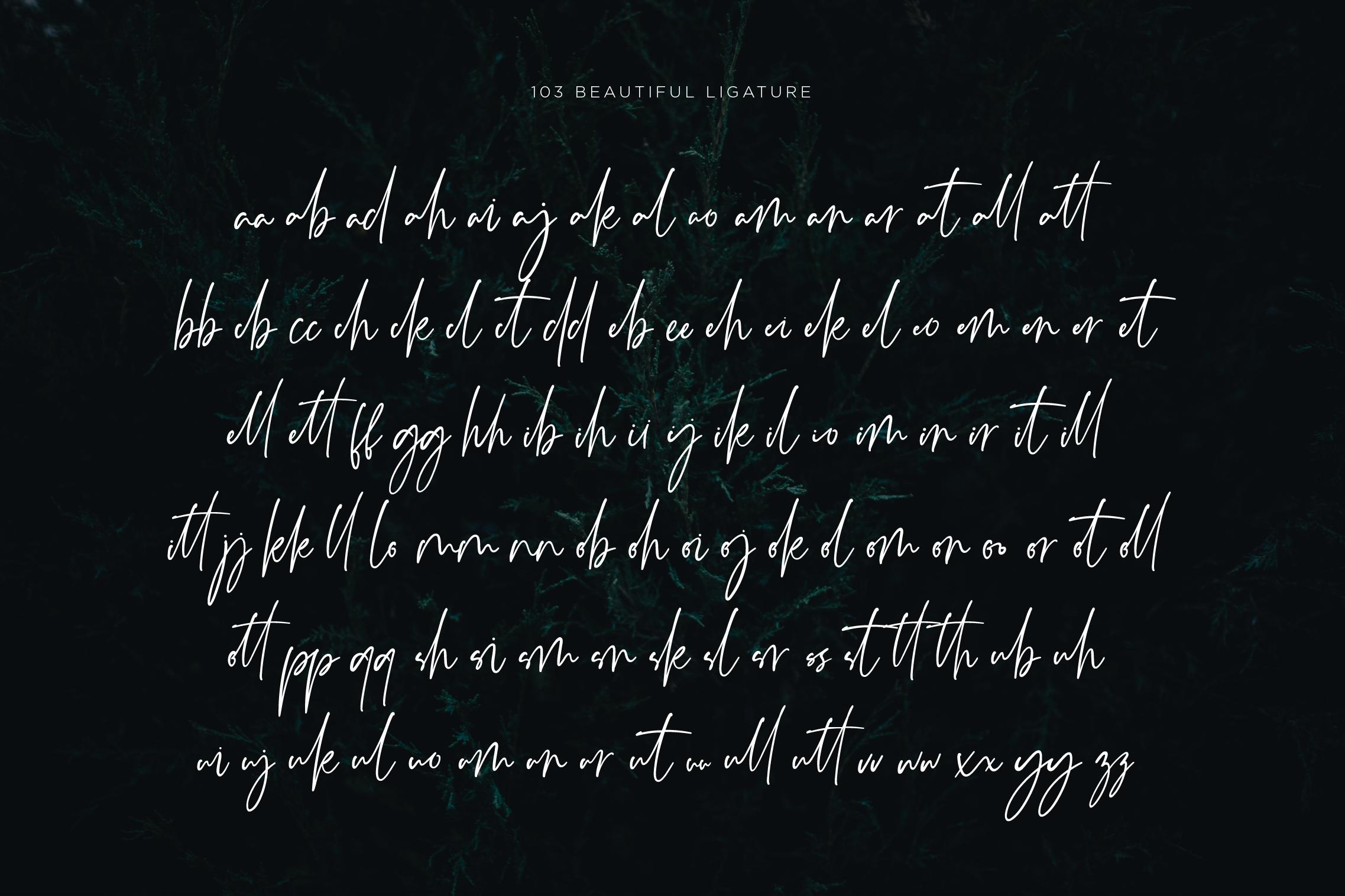 Monatta - Luxury Signature Font example image 8