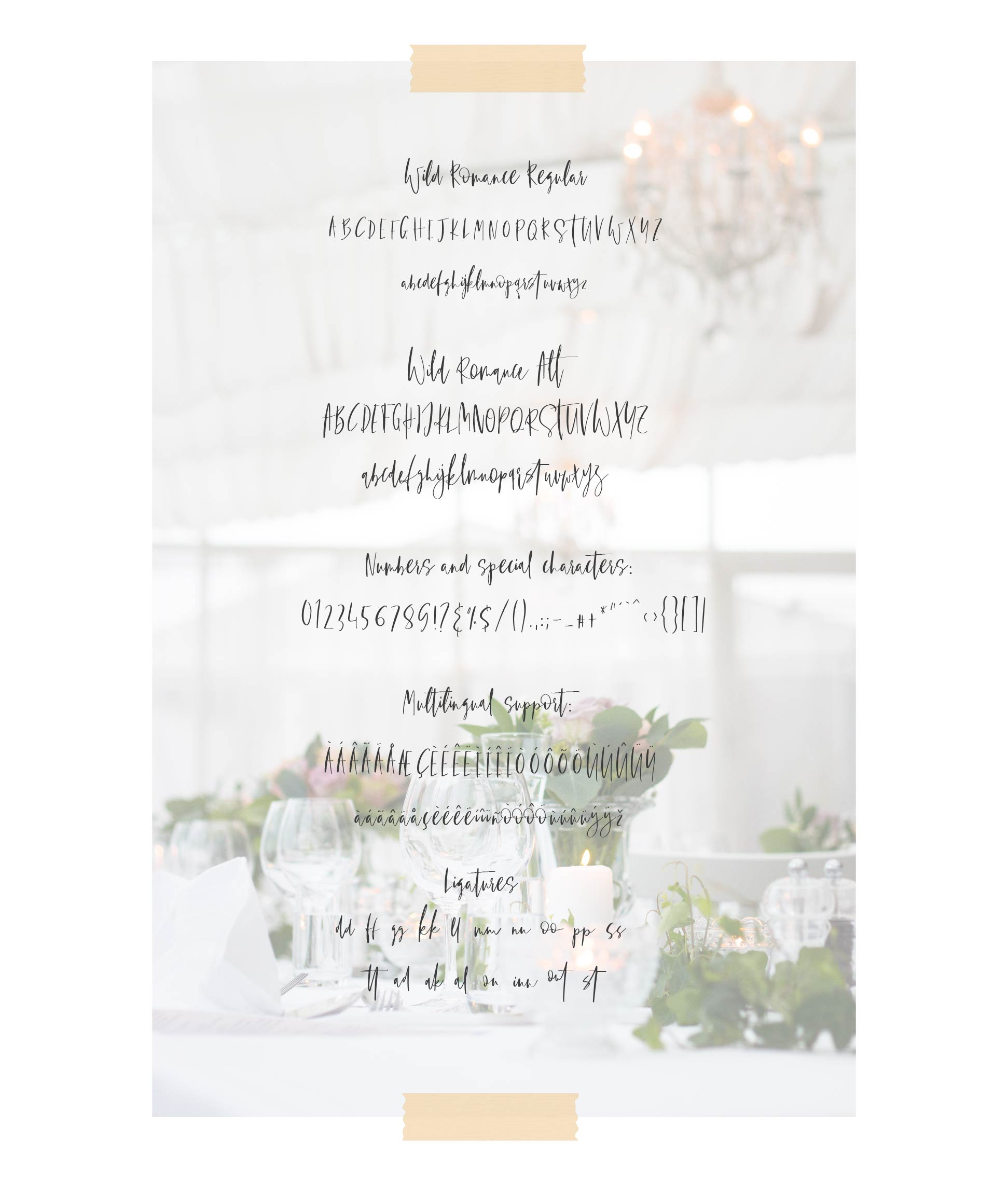 Wild Romance Script Font example image 6