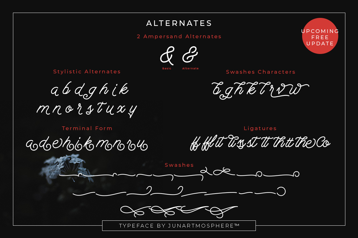 Berliana Monoline Font Extrass Logo example image 3